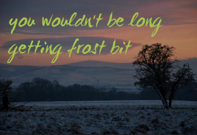 frostbit2
