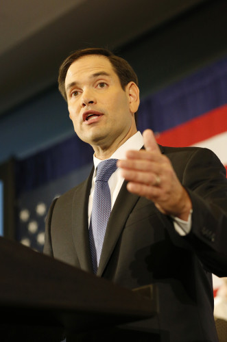 2016 Election Senate Rubio
