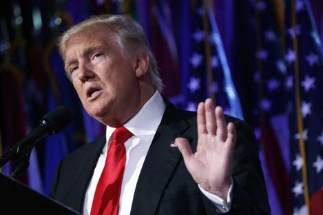 Trump-CEOs and Politics
