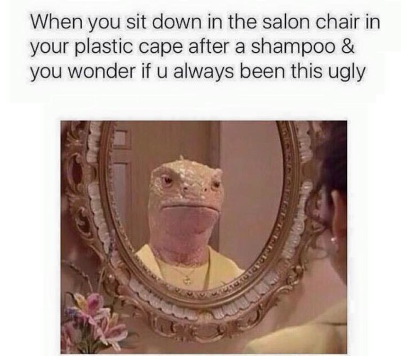when-you-sit-down-in-the-salon-chair-in-your-plastic-cape-after-a-shampoo-you-wonder-if-u-always-been-this-ugly-1445729535