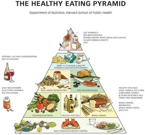 Harvard pyramid