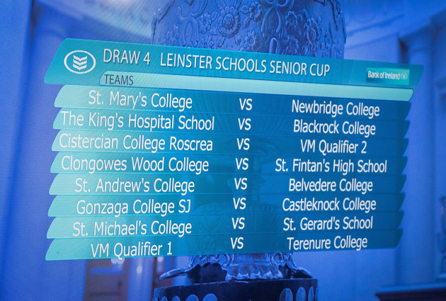 A view of the Bank of Ireland Leinster Schools Senior Cup