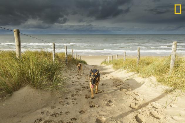 04-noordwijk-beach-netherlands