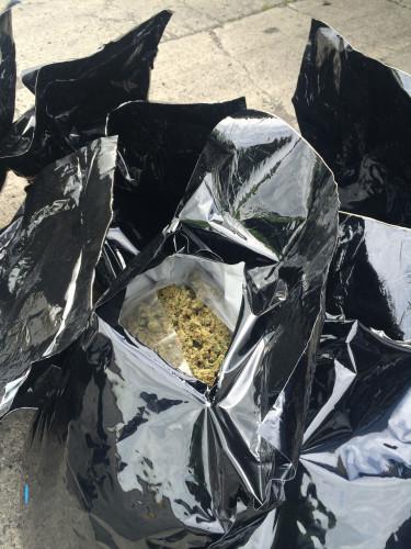 Cannabis haul discovered