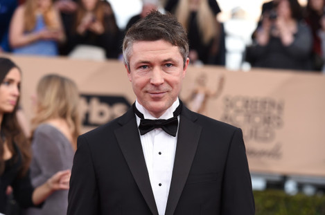 22nd Annual Screen Actors Guild Awards - Arrivals - Los Angeles