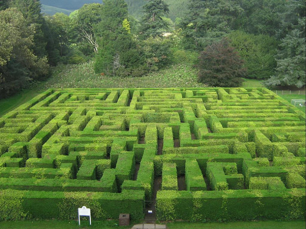 Traquair_House_Maze
