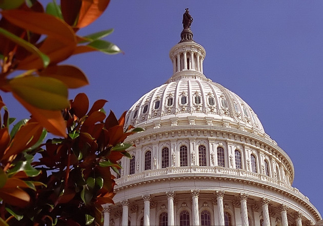Washington D.C. - Capital Building Dome