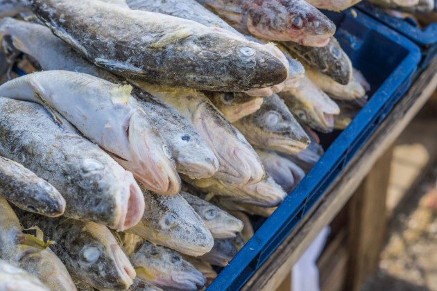 Lidl Is In Trouble For Advertising Fresh Fish Which Actually Came
