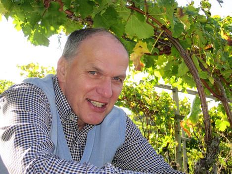 wine direct  paddy keogh
