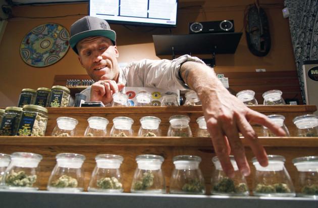 Dismantling Marijuana Reality Check