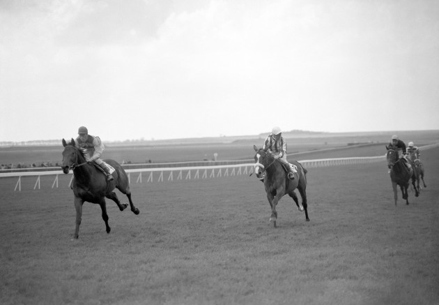 Horse Racing - Wood Ditton Stakes - Newmarket