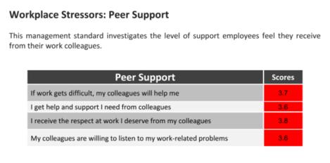 NMI - Peer Support