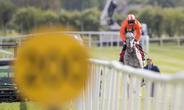 Labaik under jockey Jack Kennedy plays catch up after failing to start