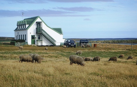Falklands residents would decide their future in a referendum