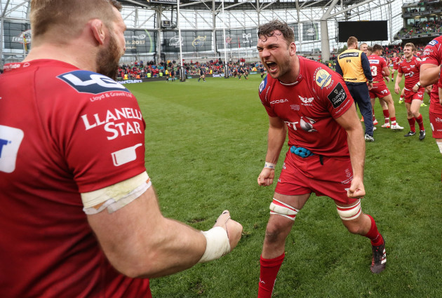 John Barclay and Tadgh Beirne celebrate