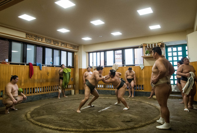 A view inside the Sumo Stables