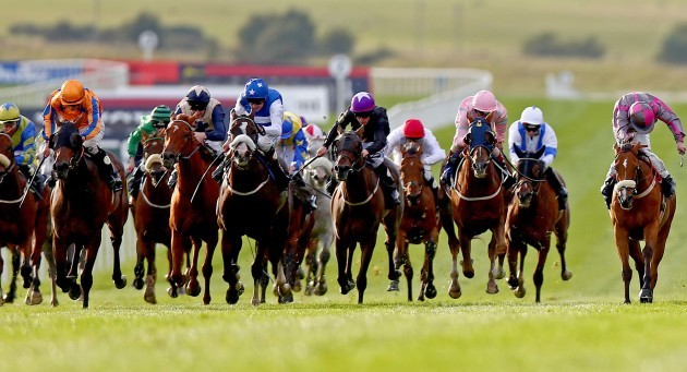 Torcedor ridden by W.M. Lordan (left, orange colours) leads the field home to win