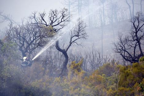Ten Thousand Flee Raging Wildfires - Bormes-les-Mimosas