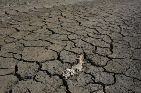Portugal Dire Drought