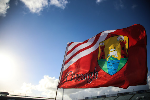 Cork fans fly their flag high after their victory