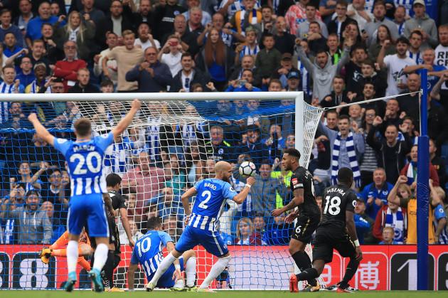 Brighton & Hove Albion v Newcastle United - Premier League - AMEX Stadium