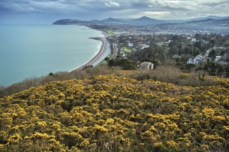View south from Killiney Hill