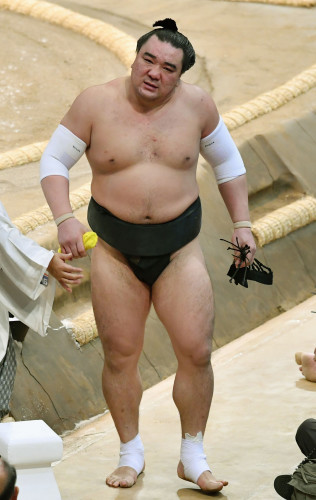 Japan Sumo Assault