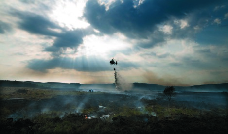 1/5/2011. Mayo Fires