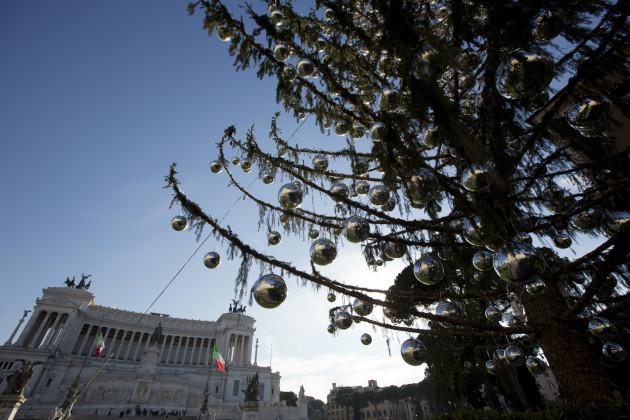 Italy Christmas Tree Needling