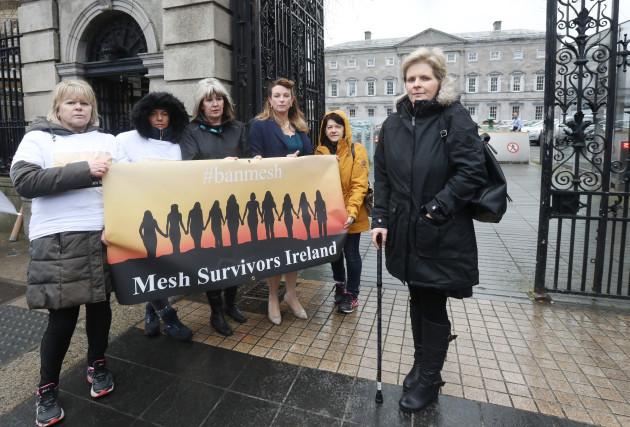 6356-mesh-survivors-ireland_90535053