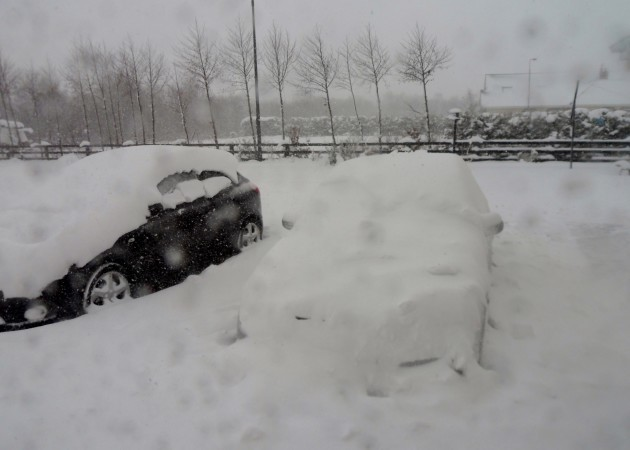 snow day 003