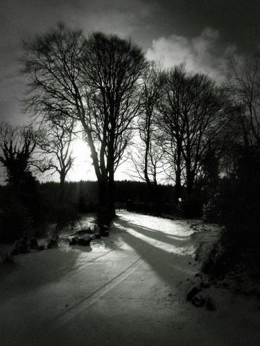 Dramatic Black & White_1519895270012
