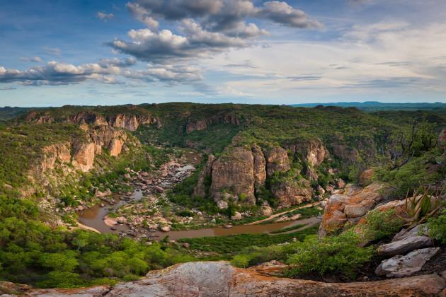 009_kruger-national-park-south-africa