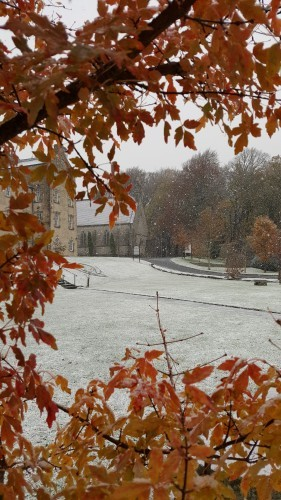 Snow Fall 17th Nov. 2016