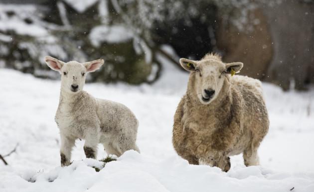 snow-scenes-758a7388_90539998