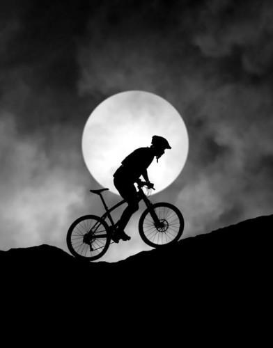 night-sportif