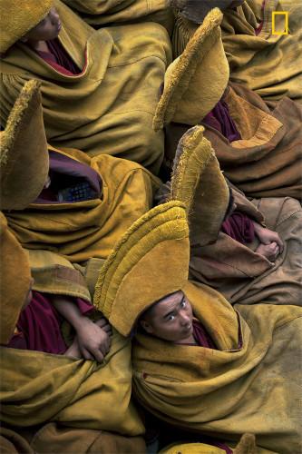 Tibetan iMonks