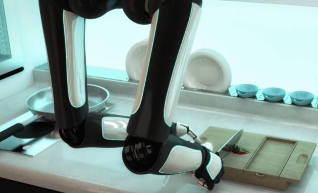 moley robotics