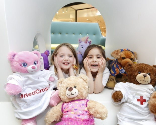 Photo 1 Build-A-Bear Irish Red Cross