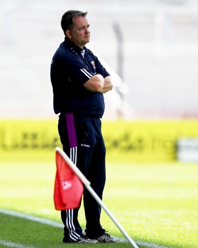 Davy Fitzgerald dejected late in the game