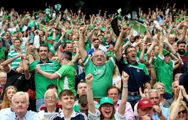 Limerick fans celebrate a score