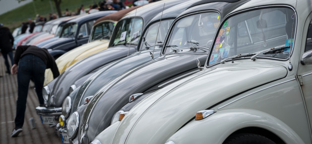 May Beetle Meet