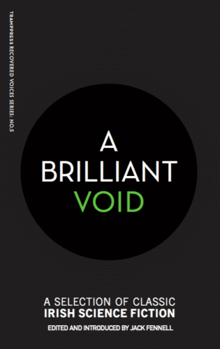 A Brilliant Void Cover (1)