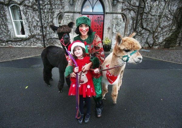 3  Santa at Barreststown_90559391