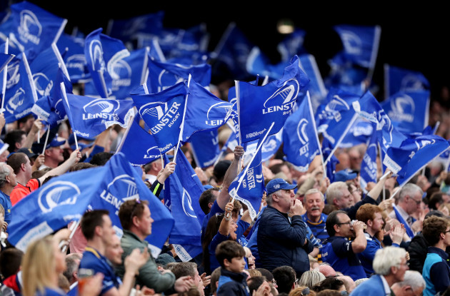 Leinster fans wave flags during the game