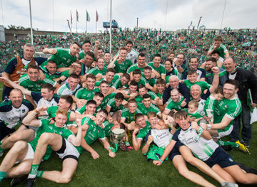 limerick-celebrates-after-the-game-with-the-liam-maccarthy-390x285
