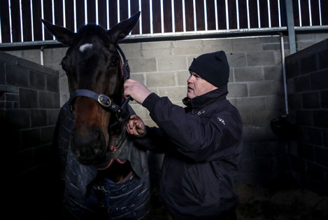 Apple's Jade with Gordon Elliott