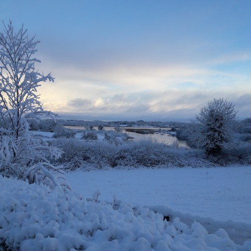 Zuzanna Lubienska snapped this at 9am this morning near Carrick-on-Shannon, Co. Roscommon