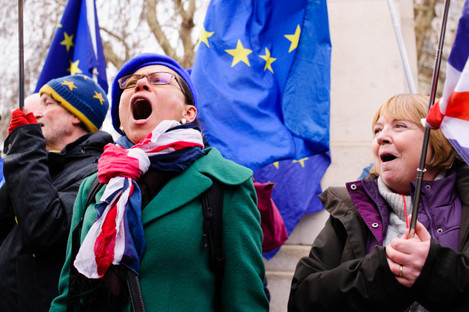 Protest against Brexit outside Houses of Parliament in London, UK - 29 Jan 2019