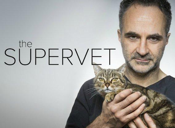 the-supervet